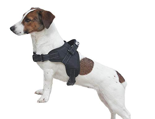 2PET Dog Harness No Pull Reflective Harnes Adjustable for Medium and Large Breeds Vest Style No Collar for an Easy Walk Experience with Handle and Padded Mesh