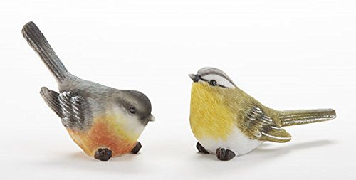 Delton 3.6X1.8 Inches Resin Long Tail Bird,Set Of 2
