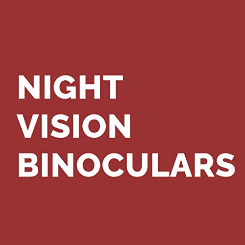 Can You Use Night Vision Binoculars During the Day?