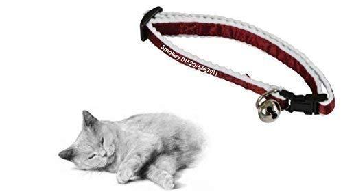 Personalisiertes Katzenhalsband rot, bedruckt mit Namen & Telefonnummer für ihren Liebling