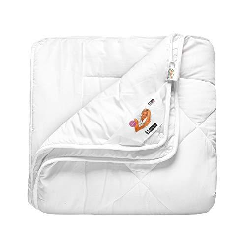 Meisterhome 4 Jahreszeiten Bettdecke 8 Maße Mikrofaser Decke Steppdecke Jahreszeiten-Steppbett (135 x 200 cm)