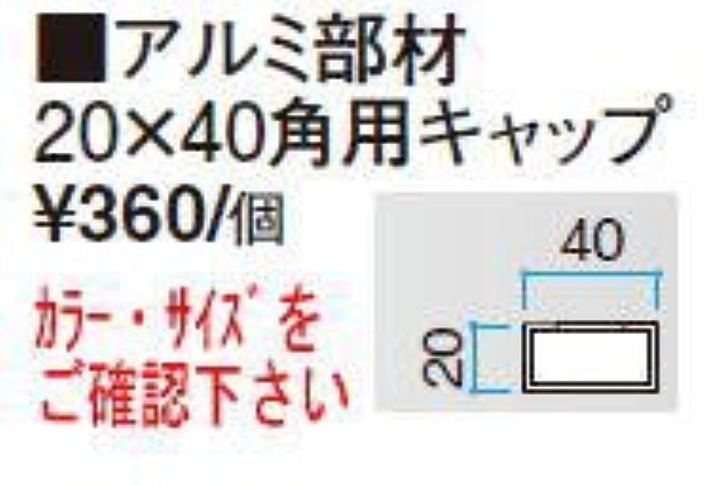 タカショー アルミ部材 20×40角用キャップ ウォールナット/ビス付 20×40角用