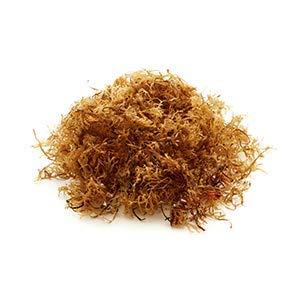 Hopfenlager Irish Moss, Knorpeltang 50g & 100g (100g)