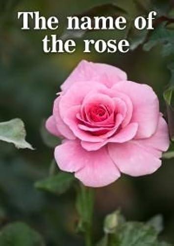 rot Herring Games Der Name der Rosa - Mord-Freies Mystery Spiel für 10 Spieler