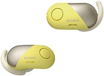 Sony Wireless Noise Cancelling Bluetooth In Ear Sports Headphones