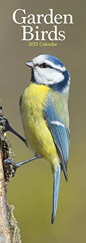 Garden Birds Slim Calendar 2022 | Slimline Wildlife Calendar – 12 Month: Address Books, Journals & More