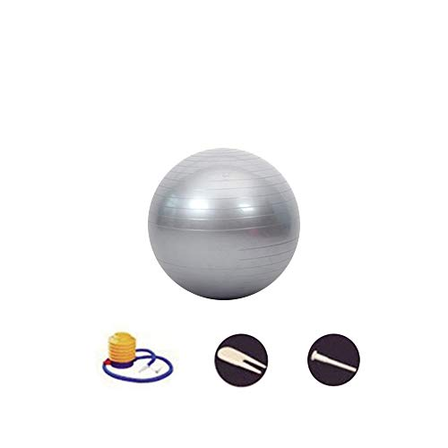 SENDILI Balón de Pilates - Fitness Pelota de Ejercícios Incluye Bomba Resistente a la Explosión para Gimnasia, Fitness, Yoga, Plata-3, 65CM