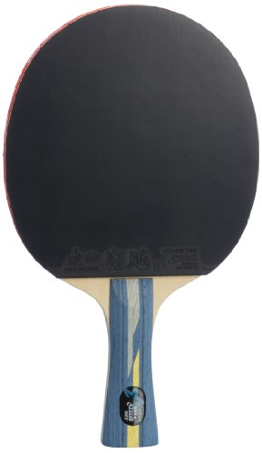 DHS Professional Quick-attack X Series Carbon Table Tennis Racket-shakehand