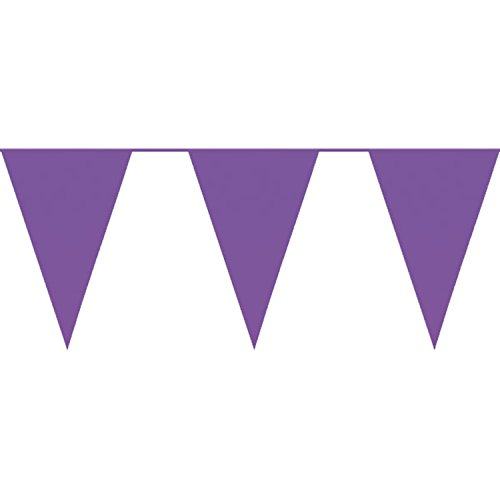 Diamante Crafts 10m / 32 ft Solid Colour Bunting - Flag Banner Pennant Party Decoration Garland (Purple - Solid Colour Banner)