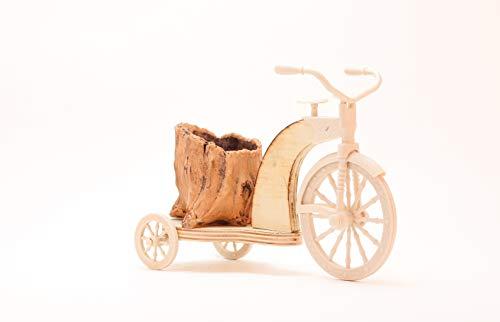 Fahrrad-Blumentöpfe für Fahrrad, Blumentopf, Fahrrad, dekorativ, aus Holz, Blumendekoration, für Garten oder Terrasse