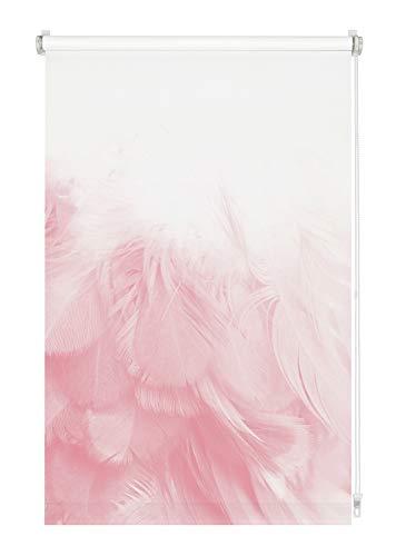 GARDINIA Rollo Digiprint Federboa zum Klemmen, Tageslicht-Rollo mit Digitaldruck, Blickdicht, Alle Montage-Teile inklusive, Weiß/Dekor, 90 x 150 cm (BxH)