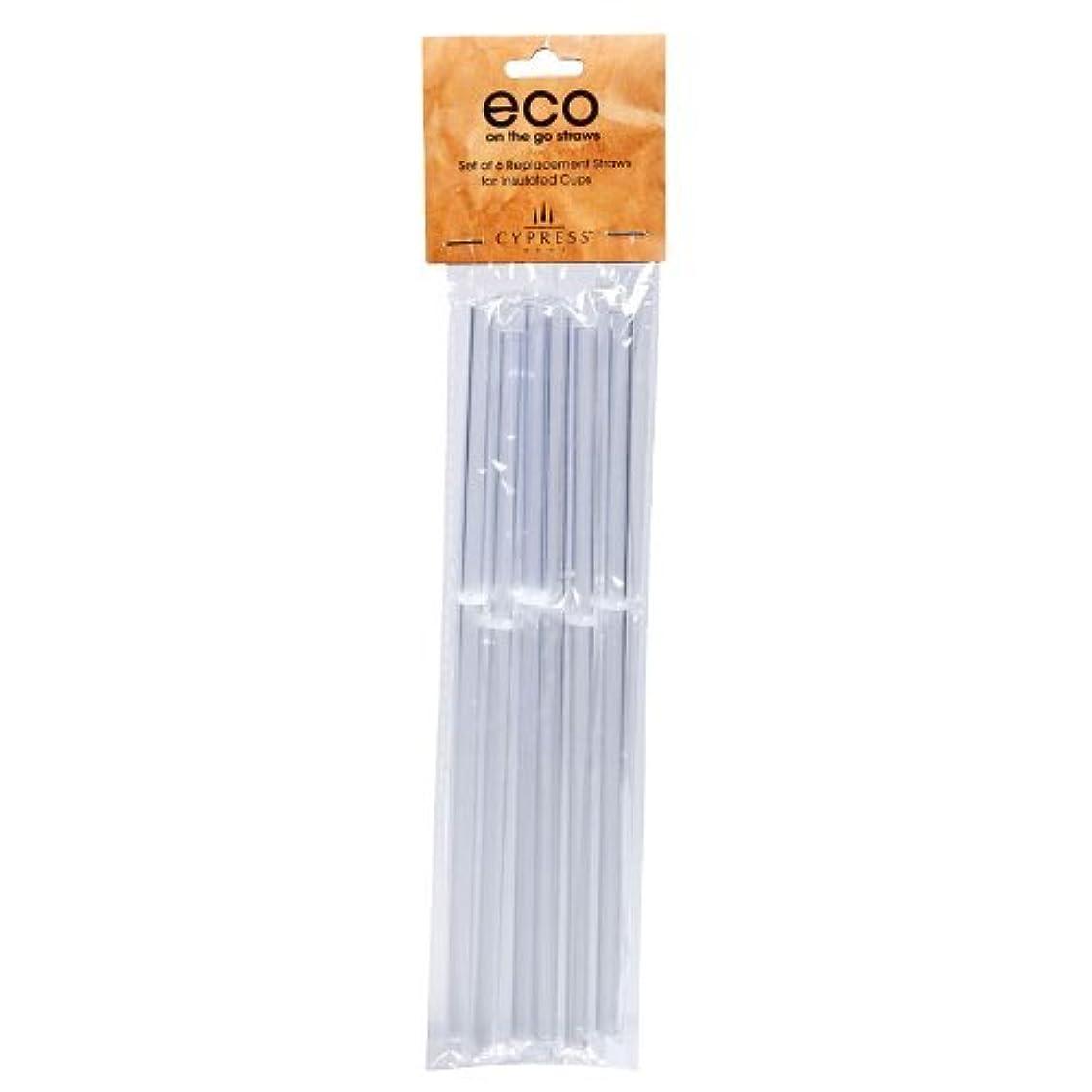 Peachy Kitchen Acrylic Straws, Set of 6