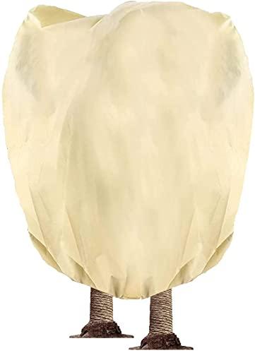 Hydrogarden Winterschutz Vlieshaube EXTREM beige, 360 x 250cm 140g/qm extrem haltbar – Kübelpflanzensack atmungsaktiv Olivenbäume, Palmen/Frostschutz Pflanzen/Reißverschluss