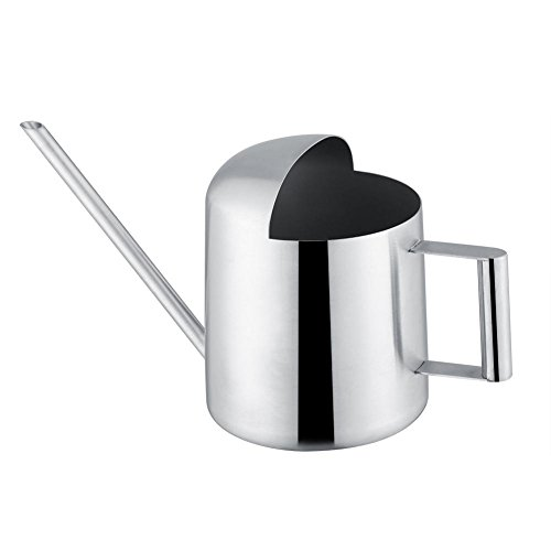 ROBTLE Solid Watering Can, Stainless Steel Watering Can Garden Plant Flower Long Mouth Sprinkling Pot for Bonsai Indoors(500ml17oz)