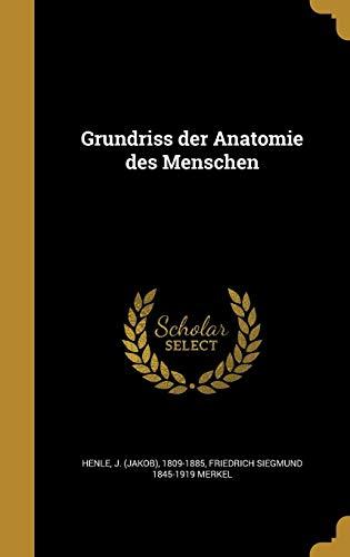 GER-GRUNDRISS DER ANATOMIE DES