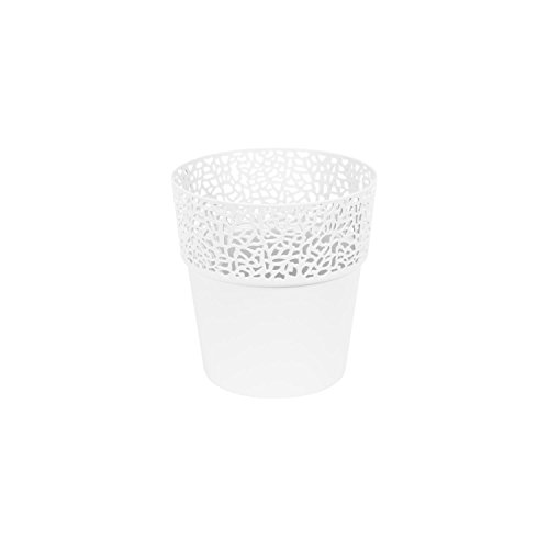 Rosa en plastique, joli pot de fleur 11,5 cm, elegante boite en blanc