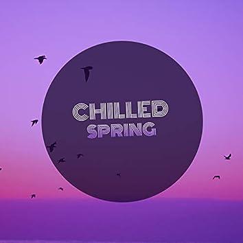 # 1 Album: Chilled Spring