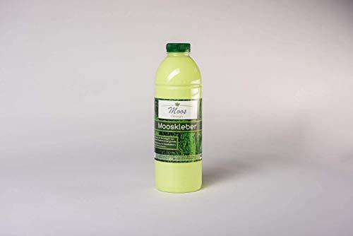 """Mooskleber\""""Moss-Glue\"""" (200 ml Flasche) Moosbilder Do-It-Yourself Mooskleber zum Moosbilder selber machen günstig kaufen Osterdeko Pflanzenbilder Bastelkleber"""