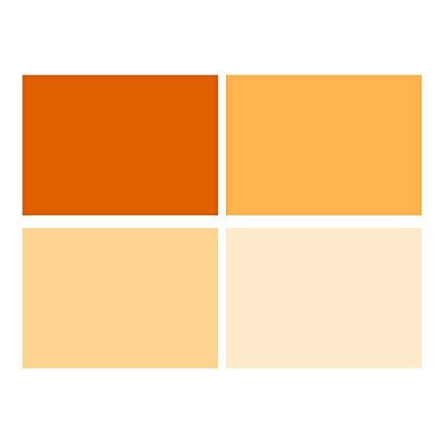 Selens 40x50cm Farbfolie Farbfilter 4 Stück Transparente Farbkorrektur Beleuchtungs Blitz Folien Farbfolien für 800W Rot Licht Stroboskop Taschenlampe Flash Fotostudio Fotografie Orange