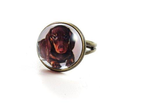 schmuck-stadt Dackel Cabochon Ring bronzefarben Hund Welpe