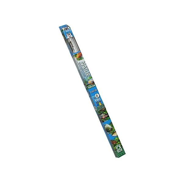 JBL Leuchtstoffröhre, Tageslichtröhre für Süßwasseraquarien, Solar Natur