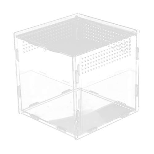 F Fityle Fütterungsbox für Reptilien, 15x15x15 cm - Typ 1