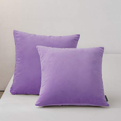 RBSC Home Pack of 2 Velvet Pillow Covers Decorative Square Pillowcase Soft Solid Cushion Case with Hidden Zipper for Sofa Bedroom 18 X 18 Inch