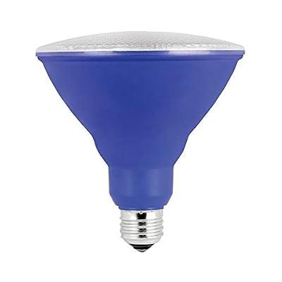 Feit Electric LED Non Dimmable PAR38 Blue Reflector PAR38/B/10KLED/BX