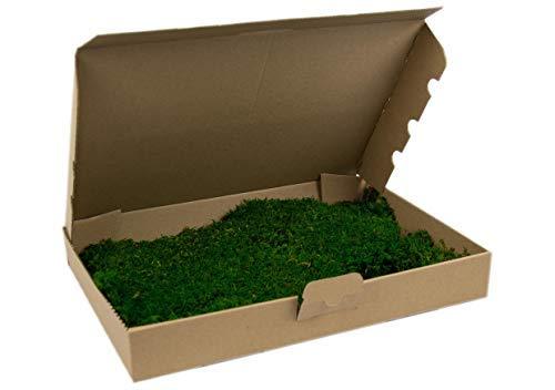 Premium Flachmoos konserviert, ausgesuchtes, echtes haltbares Moos für die Dekoration kaufen, Prime, Moss, Deko, Dekoration, für Gestecke Frühlingsdeko Moosbilder Pflanzenbilder