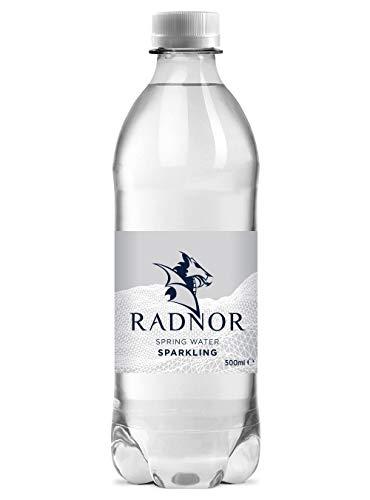 Radnor Hills Sparkling Spring Water - Pack Size = 24x500ml