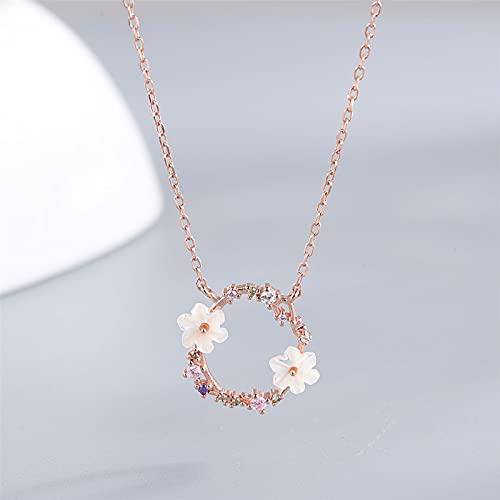YNING Collar Femenino/Collar con Colgante de Corona de Diamantes/Plata de Ley S925 / Longitud de Cadena Ajustable/Regalo para Niñas, Novia, Buenos Amigos/Simple y Elegante