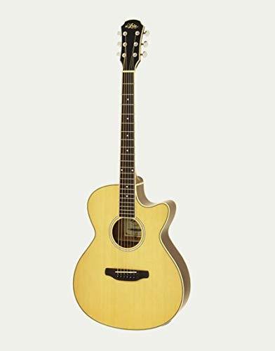 ARIA FET-01STD N Elecord Elektroakustische Gitarre Natur