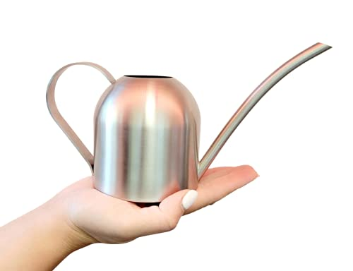 Itza Mini Stainless Steel Metal Watering Can for Indoor or Outdoor Houseplants Small Waterer Tool for Your Bonsai, Succulent & Orchid Plant Garden (15 oz.)