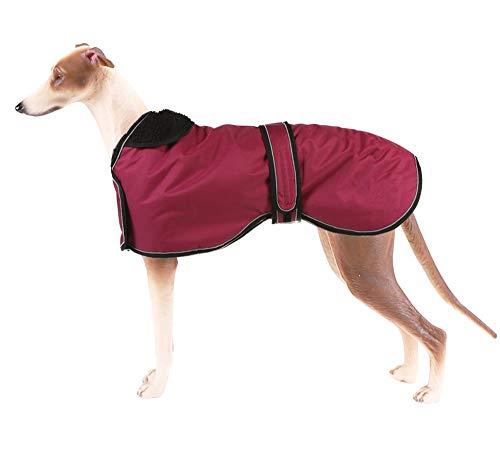 Pethiy Chaqueta Impermeable para Perros, Abrigo de Invierno para Perros con Forro de vellón cálido, Ropa para Perros al Aire Libre L(Back Length 61CM / 24in) Rojo