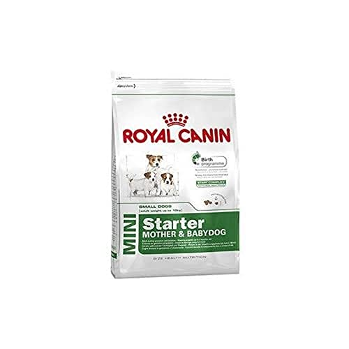 ROYAL CANIN SHN Mini Starter 1000 g