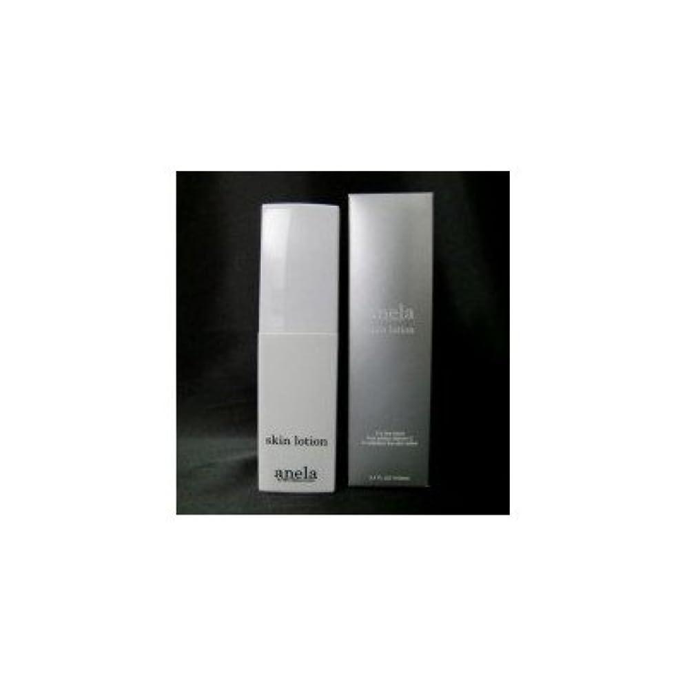 壁モーター記念碑anela アネラ スキンローション スプレータイプ 100ml フルーツ酸×ビタミンC誘導体配合 無添加スキンローション