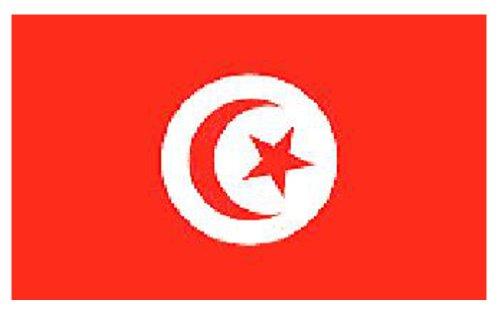 Túnez de la bandera de 152,4 cm x 91,44 cm