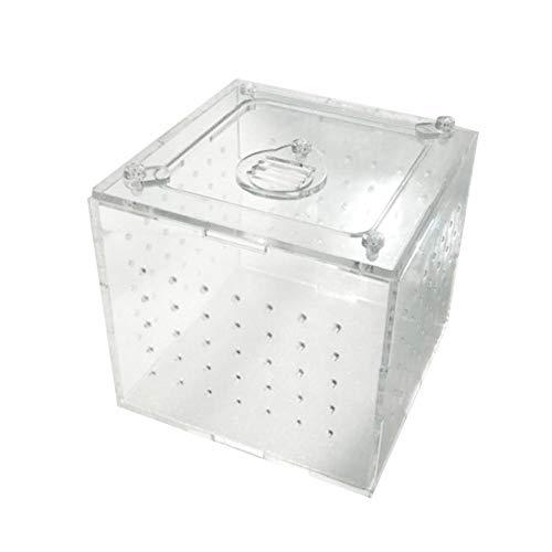 SNIIA Heldere kweekbox, klein acryl trium volledig zicht met schuifdesign voederbox voor insectenreptiele vogelspinnen Ampfibia-overlevering rupsslakkenreptiel -10 x 10 cm