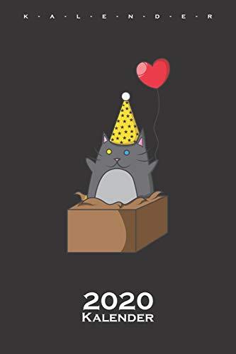 Party Katze im Karton Kalender 2020: Jahreskalender für Katzen- und Tierfreunde