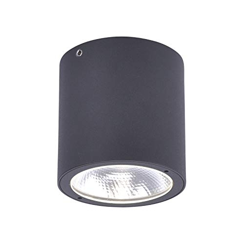 LED buitenlamp plafondlamp Paul Neuhaus Georg 9673-13 Tuinlicht