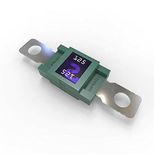 AUPROTEC Mega Hochstromsicherung Schraubsicherung 80A - 500A Auswahl: 125A Ampere grün, 1 Stück