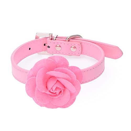 JHGJHG Cuello de Gatos Collars Lindo Collar con Flor para un Gatito pequeño (Color : Pink, Size : S)