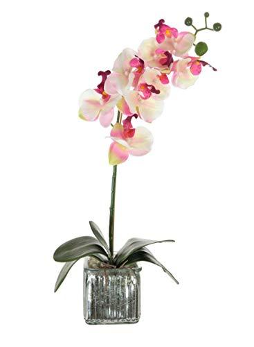 Home Decor 4 U - Orchidea Artificiale In Vaso Cubo Cromato (53cm...