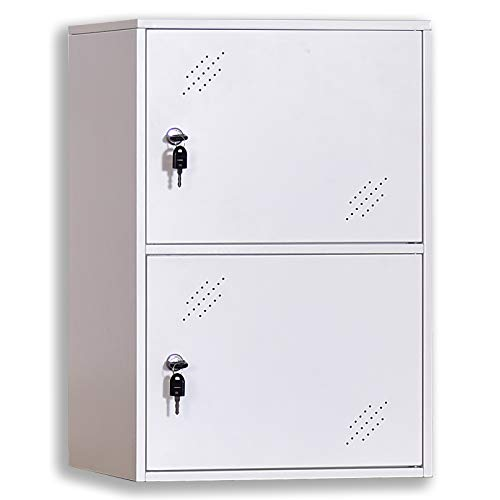 NITETRONIC 2-Door Assembled and Combinable Office Metal File Locker, School Lab Supplies, and Bedroom Organizer, Steel Cabinet to Storage Toys, Tools and Clothes