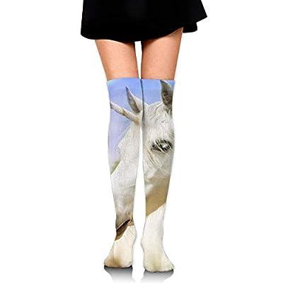 Mujeres Niñas Rodillas Calcetines altos Unicornio Fotografía realista Muslo Medias largas de tubo 60 CM / 23,6 pulgadas