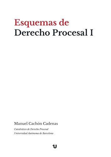 Esquemas de Derecho Procesal I