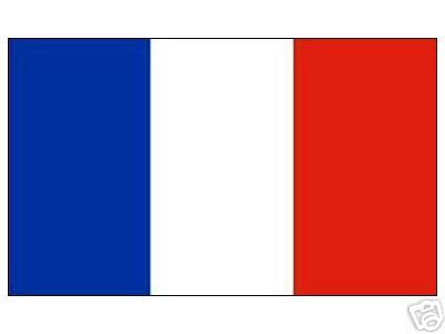 Grand drapeau france 150 x 250 cm