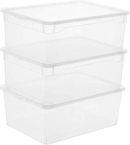 Rotho Clear Set di 3 scatole da 10l con coperchio, Plastica (PP) senza BPA, trasparente, 3 x 10l (36.0 x 26.0 x 14.0 cm)