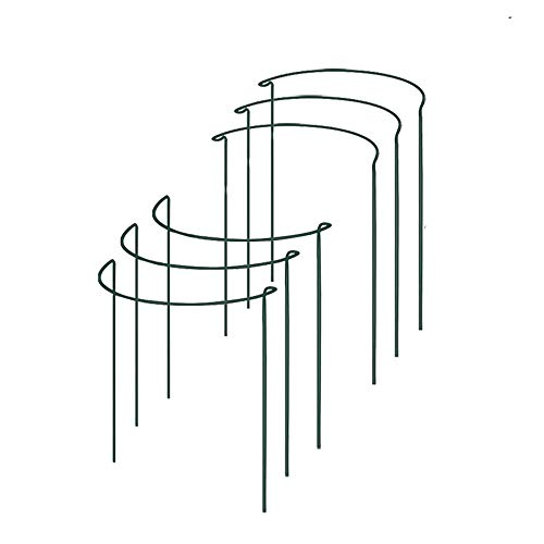 6 Pack Half Round Garden Plant Support Ring Hoop, TANOKY Sturdy Metal Plant Support Stakes, Plant Support Ring Cage for Potted Plants, Tomato, Rose, Vine - 16' High x 9.8' Wide