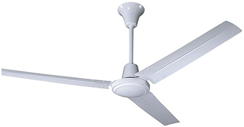 Hardware House 41-5976 Ceiling Fan with lights, Gloss White
